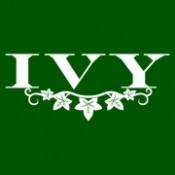 IVY (0)